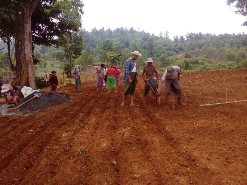 Providing Groundnut Cultivition (at Mong Yaw Village)